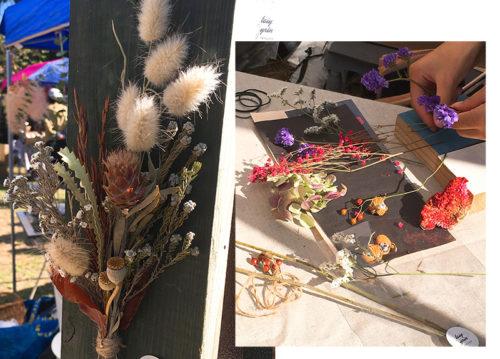 植物標本ワークショップ