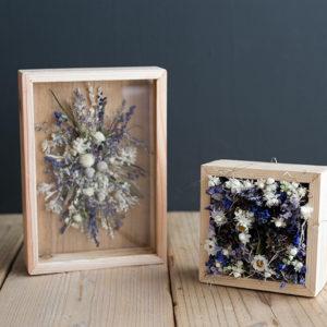 太陽樹林-箱花